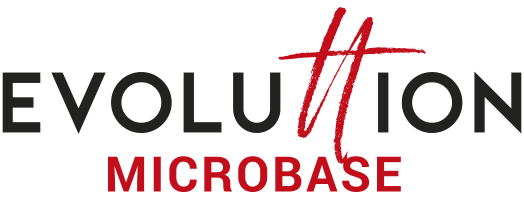 Logo Evoluttion